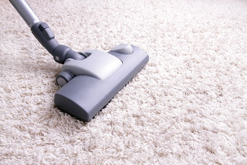 Where Can I Find Industrial Carpet Cleaning Services In