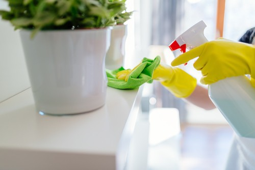 how-to-reduce-household-germs-viruses